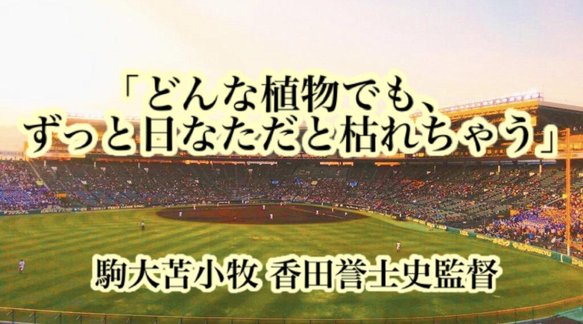 「どんな植物でも、ずっと日なただと枯れちゃう」/ 駒大苫小牧 香田誉士史監督